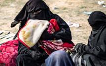 Neuf enfants de djihadistes ont atterri en France ce mardi