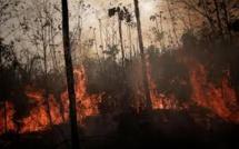 Incendies en Amazonie: Les hospitalisations d'enfants en hausse par rapport à 2018