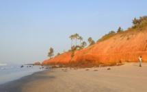 Gambie: Des arbres comme rempart face au recul du littoral