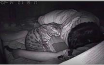 Il installe une caméra dans sa chambre et découvre pourquoi il rêvait qu'il s'étouffait pendant la nuit