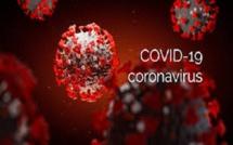 Propagation du Coronavirus: 42725 nouveaux cas confirmés, 1 185 morts en 24 heures, le cas du Brésil impressionne le monde