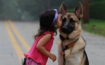 21 raisons pour lesquelles vous devriez remercier votre chien ! La 14 a dû tous nous arriver au moins une fois...