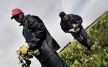 Drame à Bari en Italie : Talla Seck, un travailleur saisonnier de 56 ans meurt asphyxié