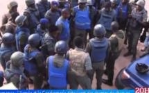 Casamance: L'armée et la gendarmerie détruisent des champs de chanvre